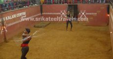 Kadathanadan Kalari Centre