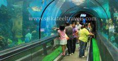 Aquarium Bangalore